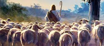 No Fear for the Flock